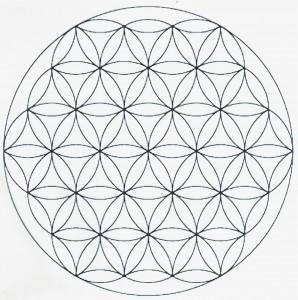 Somos seres infinitos en un Universo fractal