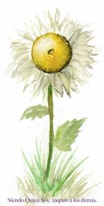 Ser una flor