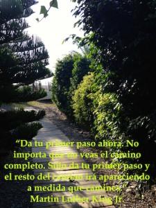 IMG_0333 copia